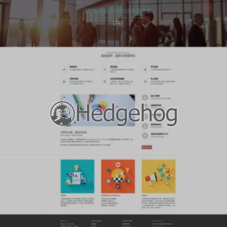 小刺猬留学 英国鱼眼网站设计